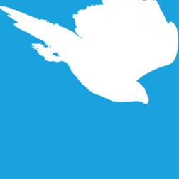Peregrine icon